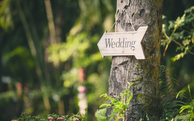 Finding the Perfect Wedding Venue in Texas